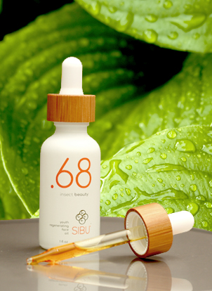 introducing Point68 organic sea buckthorn + pure soldier grub oil